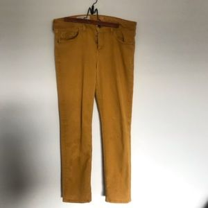 Anthropologie | Pilcro Mustard Jeans | Size 32